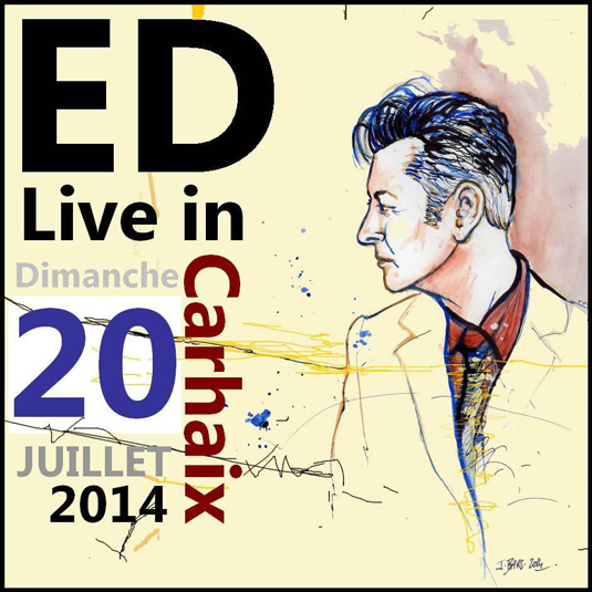 Etienne Daho - Oeuvre de john Bars - Festival Vieilles Charrues Carheix