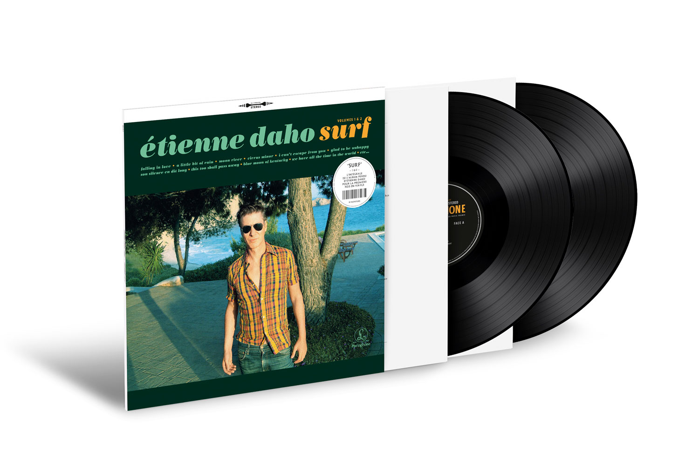Album vinyle vue 3D